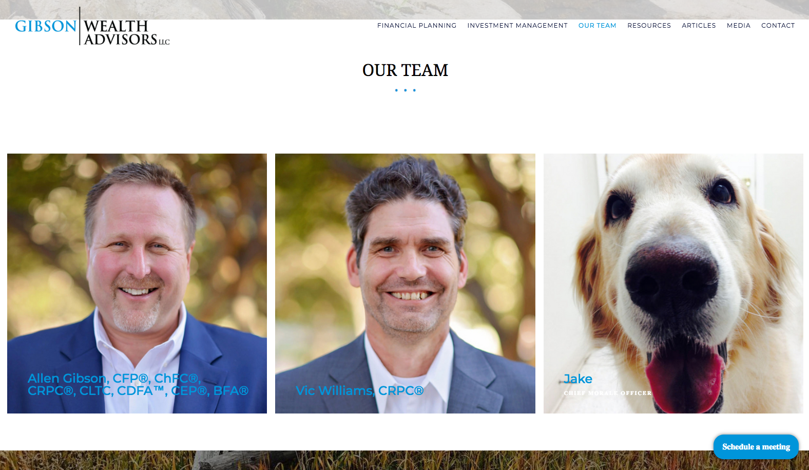gibson wealth team, advisor website