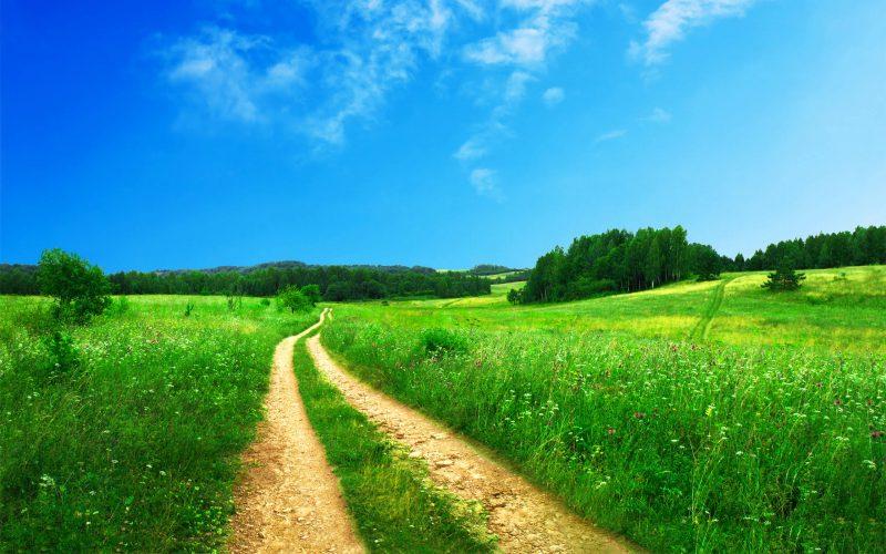 Advisor Websites: Prominent Financial Planning, LLC Thumbnail