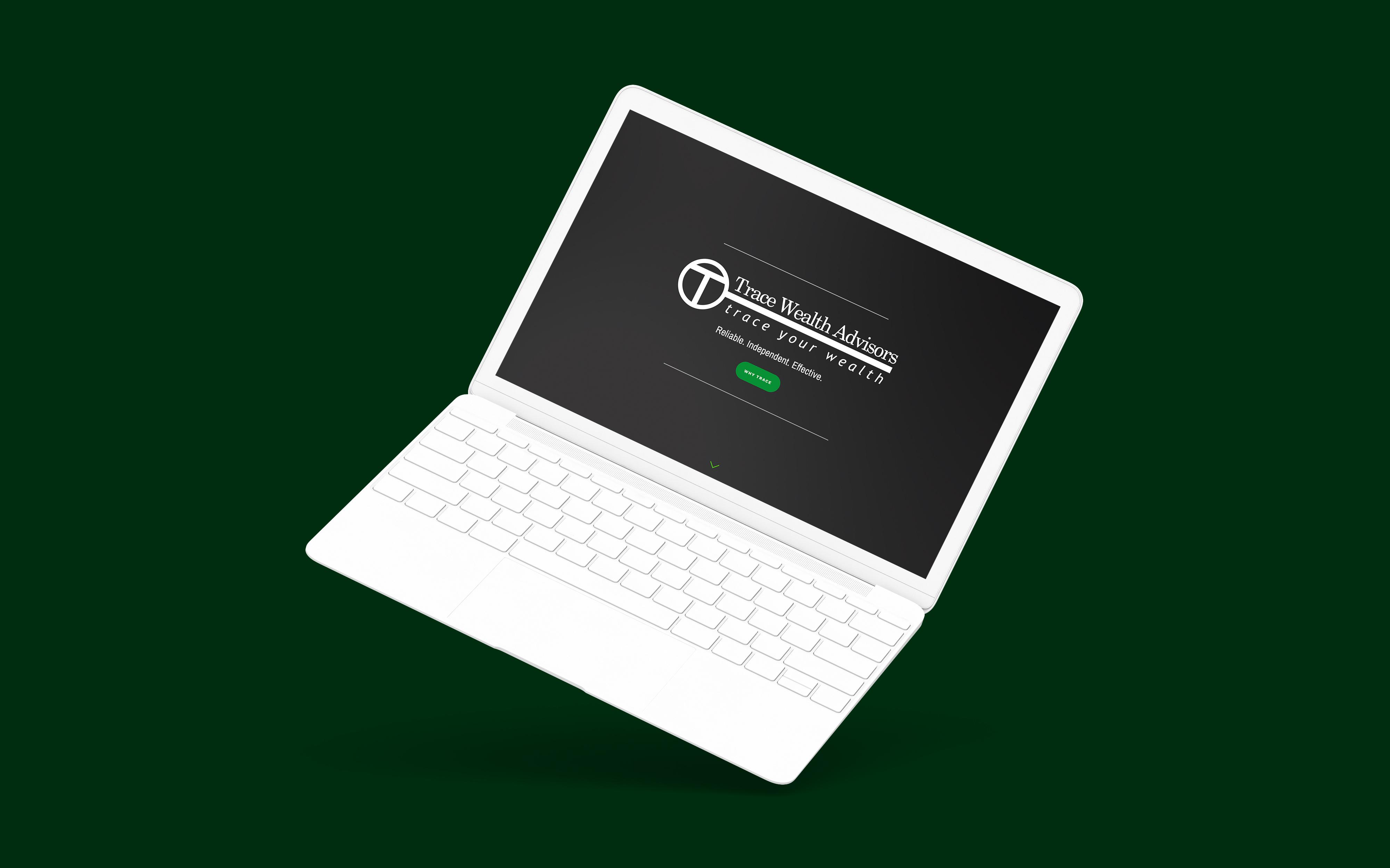 Financial Advisor Website Showcase: Trace Wealth Advisors