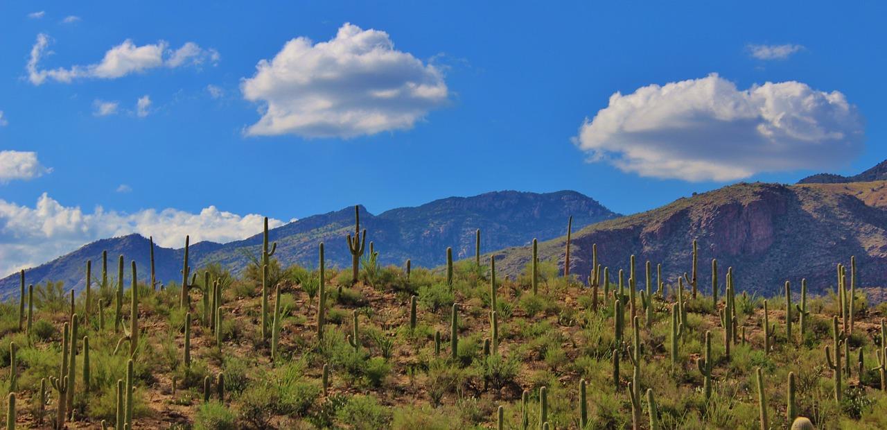 Advisor Website Showcase: Cambridge Financial Group in Tucson Featured Image